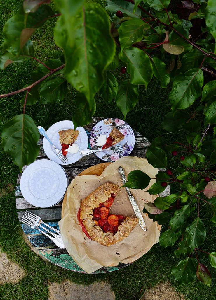 Strawberry and Apricot Galette