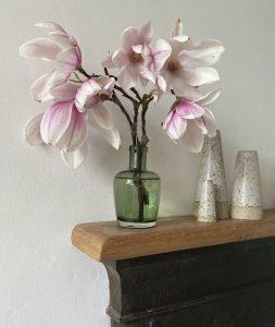 Magnolia on a mantle piece - Hannah Bullivant