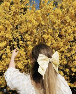 Yellow forsythia with Charlotte wearing a yellow bow in her hair